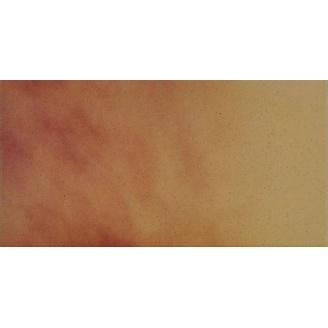 Підлогова плитка Cerrad гладка 300х148х11 мм jesienny lisc