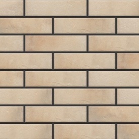 Фасадна плитка Cerrad Retro brick структурна 245х65х8 мм salt