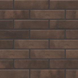 Фасадна плитка Cerrad Retro brick структурна 245х65х8 мм cardamom