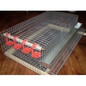 Сетка для ограждения цыплят 1х1х0,5 м с крышкой