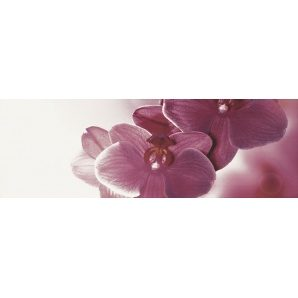 Плитка декоративна Paradyz Abrila Inserto Kwiat B 200х600х9,5 мм