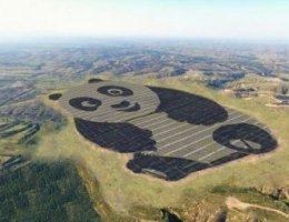 У Китаї побудували сонячну електростанцію у формі... панди ФОТО