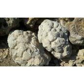 Камінь Черепаха насипом 60 кг сірий