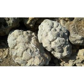 Камень Черепаха насыпом 60 кг серый