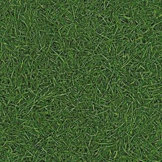 Линолеум IVC LEOLINE Bingo GRASS 25 2 м