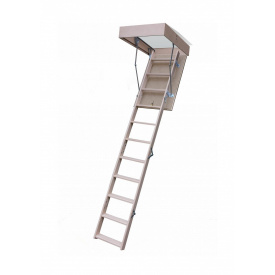 Горищні сходи Bukwood ECO Long 120х80 см