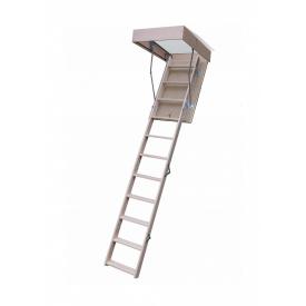 Горищні сходи Bukwood ECO Mini 90х80 см