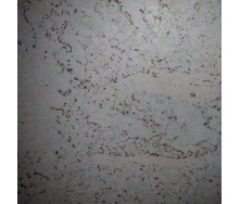 Настенная пробка Wicanders Dekwall Roots Sado White 600х300х3 мм