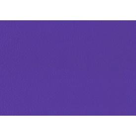 Спортивний лінолеум LG Hausys Sport Leisure 4.0 Solid 4 мм 28,8 м2 purple (LES6701-01)
