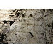 Каменный шпон прозрачный South Grey 610х1220 мм