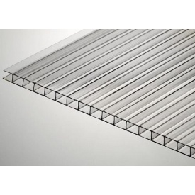 Сотовый поликарбонат Placarb 6000x2100х10 мм прозрачный