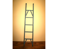 Лестница приставная ДСОП-2,5