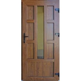 Двери входные металлопластиковые Termoplast Plus М-2 970х2050 мм