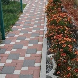 Тротуарна плитка Золотий Мандарин Квадрат великий 200х200х60 мм на сірому цементі чорний