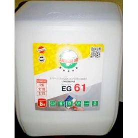 Грунтівка Anserglob EG 61 концентрат 1:6 5 л