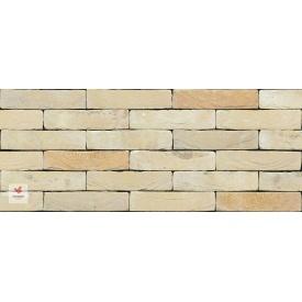 Цегла ручного формування Nelissen Bricks Monet WV50 210x100x50 мм