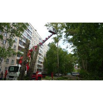 Обрезание сухих веток на деревьях с автовышки