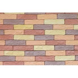 Гіпсова плитка Римськи цеглинка 05 мікс 205х50мм
