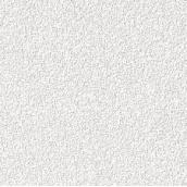 Стельова плита AMF Orbit Ecomin 600х600х13 мм