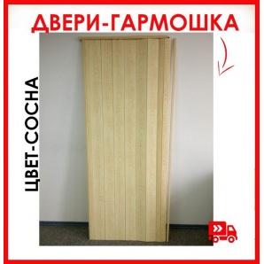 Міжкімнатні двері гармошка глухі Сосна 81x203