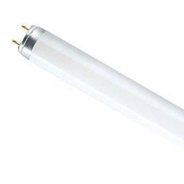 Лампа люмінесцентна Osram L 18 W 765 G 13 холодне світло