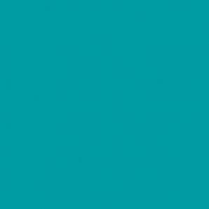 Спортивный линолеум TARKETT OMNISPORTS V 35 CORAL 2x20,5 м