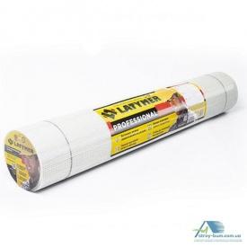 Сітка скловолоконна LATYMER ECO 160 5х5 1м х 50 м біла