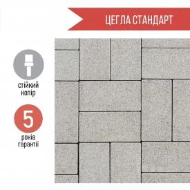 Плитка тротуарна Цегла стандарт 6 см сіре на сірому цементі
