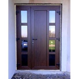 Вхідні двері металопластикові WDS 5S