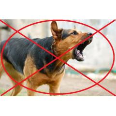 Отпугиватели собак (кошек, белок)