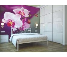 Ліжко металеве Діана 120 Метал дизайн